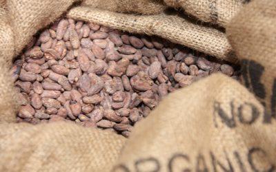 La Academia de Mercados Europeos de Chocoa 2018
